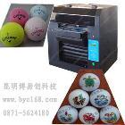 供应昆明博易创byc168-2.3工艺油画印刷设备